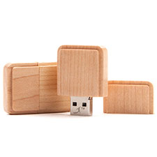 USB-Stick Natur