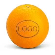 Logo-Orange mit Laserung